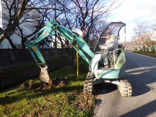 さくら保存会、宝桜並木に肥料を施しました!
