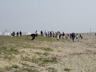 2018年4月1日(日)第112回 吉崎海岸清掃事業 活動報告