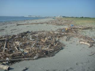 2018年8月5日(日)第116回 吉崎海岸清掃活動報告