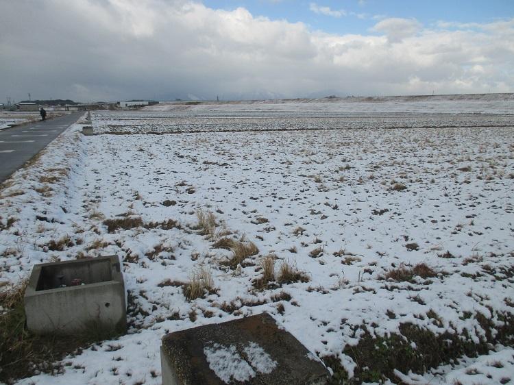 1月27日(日)、朝の雪景色